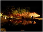 梅小路公園の朱雀の庭の鏡池に映る紅葉2