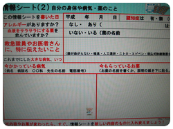 大きな字で書ける情報シート2